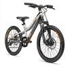 s'cool troX elite 20 9-S - Vélo enfant - argent